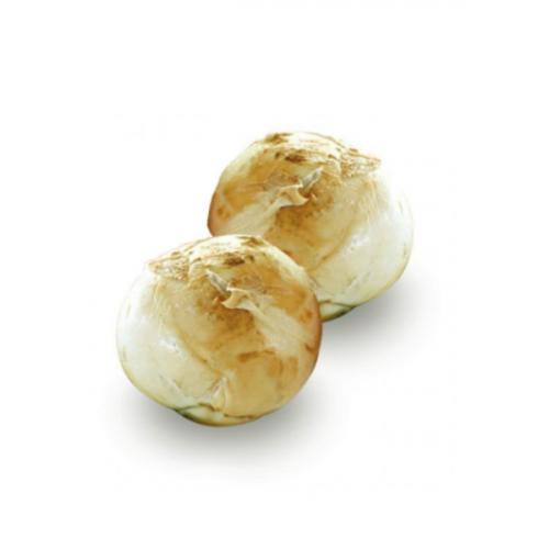 Mozzarella di Bufala...